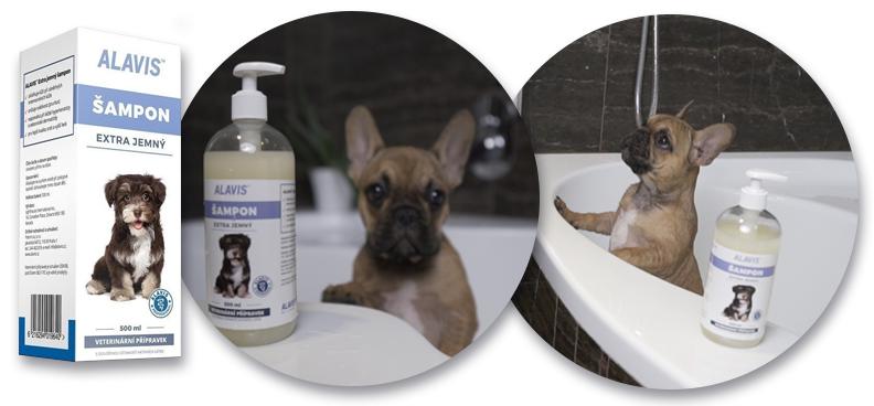 Vybíráme šampon pro psa. Jak zvolit ten nejlepší  - VášChovatel.cz bda871e171