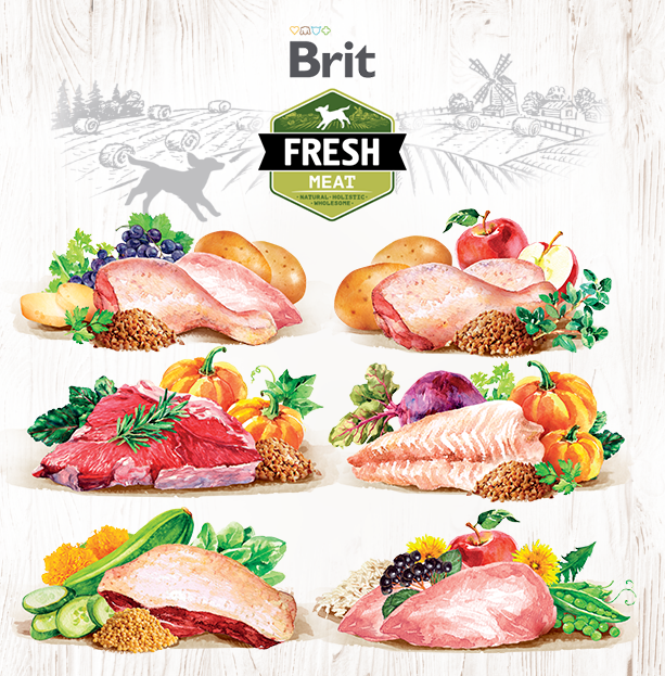 Brit Fresh Meat